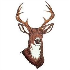White Tailed Deer embroidery design