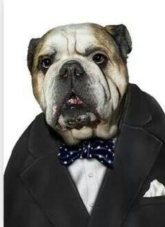 La mascota de Churchill