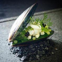 Squid l Onion l Lime Caviar on Chilli Garlic Jelly by Tapas, Food Plating Techniques, Modern Food, Star Food, Molecular Gastronomy, Food Presentation, Creative Food, Food Design, Chefs