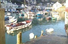 1 Bedroom Apartment in Polperro to rent from pw. With balcony/terrace, TV and DVD. 1 Bedroom Apartment, Cornwall, Balcony, Certificate, Trip Advisor, Terrace, England, Tv, World