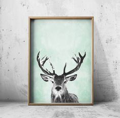 Deer Prints - Wall Art Prints - Stag Print - Deer Posters - Animal Art - Stag Poster by PrintEclipse on Etsy https://www.etsy.com/uk/listing/242770681/deer-prints-wall-art-prints-stag-print