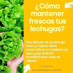 Academia Gastronómica Online Ivannia Cibs Profile Pinterest