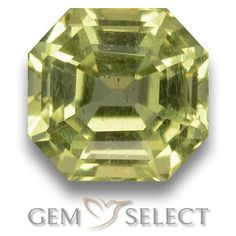 GemSelect features this natural untreated Apatite from Madagascar. This Green Apatite weighs 2.4ct and measures 7.5 x 7.3mm in size. More Asscher Cut Apatite is available on gemselect.com #birthstones #healing #jewelrystone #loosegemstones #buygems #gemstonelover #naturalgemstone #coloredgemstones #gemstones #gem #gems #gemselect #sale #shopping #gemshopping #naturalapatite #apatite #greenapatite #octagongem #octagongems #greengem #green Green Gemstones, Loose Gemstones, Natural Gemstones, Buy Gems, Gem Shop, Asscher Cut, Gemstone Colors, Shades Of Green, Stone Jewelry