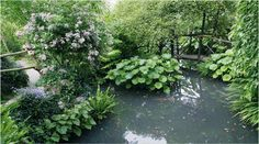 Gardone Riviera (BS): Giardino Botanico André Heller