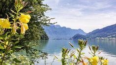 #Walensee #Quinten #Wandern mit #Mammut Mother Nature, Mountains, Travel, World, Europe, Viajes, Places, Wine Tasting, Adventure