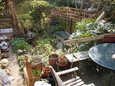 Jan's permaculture garden | Flickr - Photo Sharing!