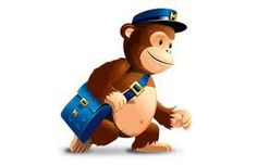 The monkey goes school.