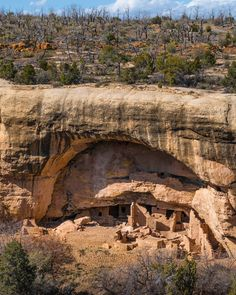 """We are what we repeatedly do. Excellence then is not an act but a habit."" - Aristotle _ Cave dwelling in Mesa Verde national park in southwest Colorado USA. _ For over 700 years from AD 600 to 1300 local indigenous inhabitants (known as Ancestral Pueblo people) lived in small villages built into cliff faces. And within 1-2 generations they mysteriously abandoned their homes. _ Shot taken on my Panasonic #LUMIX DMC-ZS100 Camera"