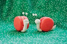 Snail Macarons