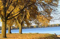 Menominee Park 2012