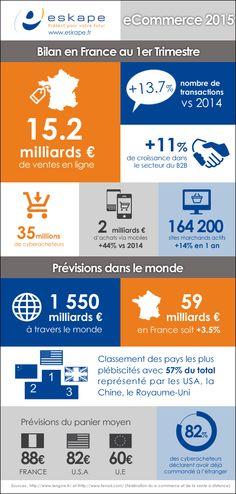 Blog - Bilan et Prévisions 2015 du eCommerce (Infographie)