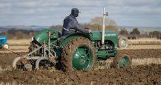 Vintage Tractors, Old Tractors, Ferguson Te20, Motors, Antiques, Gallery, Vehicles, Antiquities, Rolling Stock