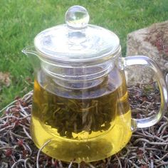Glass Teapot With Infuser now featured on Fab.