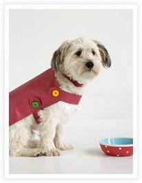 Coudre un manteau pour chien sur Manteaux-chiens.com