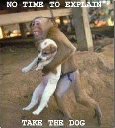 No time to explain. Take the dog.