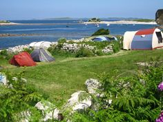 Troytown Farm   Best Campsites in Isles of Scilly, Isles of Scilly, England   Cool Places UK