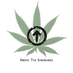 Above The Ignorance. yes