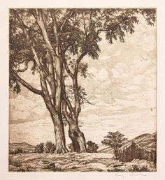 View Hilltop Elms by Luigi Lucioni on artnet. Browse more artworks Luigi Lucioni from William McWillie Chambers III. Vintage Landscape, Landscape Art, Intaglio Printmaking, Collagraph, Drypoint Etching, Artist And Craftsman, Still Life Art, Ink Pen Drawings, Wood Engraving