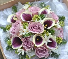 Winter wedding bouquet in plum and silver using Memory Lane roses, plum and ivory calla lilies, pale green skimmia, paperwhites, silver skeleton leaves and a touch of blue pine.