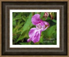 #Lilac #Flower #Framed #Print By Judi Saunders with #Bible # verse.