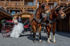 Hotel Cordée des Alpes :: WedMap Fair Grounds, Horses, Winter, Animals, Alps, Winter Time, Animales, Animaux, Animal