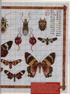 Butterflies and beetles   Gallery.ru / Фото #15 - 112 - mila29