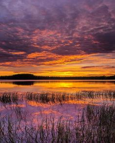 (6) Twitter > Sunset in Finland. Photo by Andrew Korson #weatherphoto