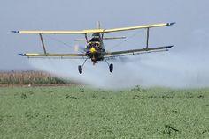"""Se trata del 2,4-D y es uno de los herbicidas más utilizados en la agricultura argentina. Según Agroindustria, la restricción es para """"generar las condiciones para una producción más sustentable"""". El ministro de Agroindustria bonaerense, Le"""