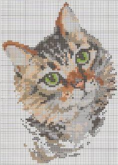 patron gato punto de cruz