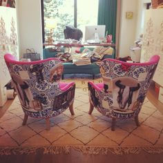 Look what just showed up at my office: Custom wingback chairs in Designer Guild hot pink velvet and Christian Lacroix print!