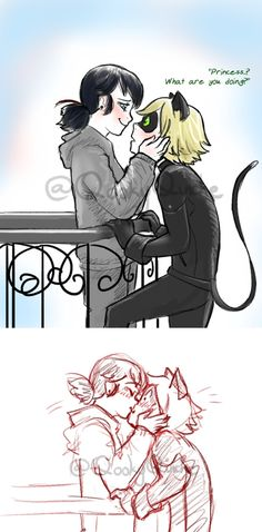 To be honest, my favorite ship is marichat! I just find it so adorable