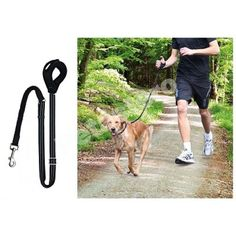 Λουρί σκύλου για Jogging Trixie Garden Tools, Pets, Accessories, Animals And Pets, Outdoor Power Equipment
