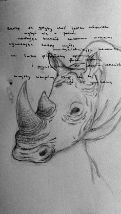 Black and white rhino and oscar wilde's quote