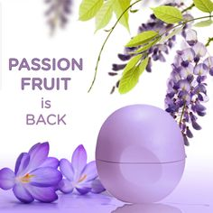 Passion Fruit is back!