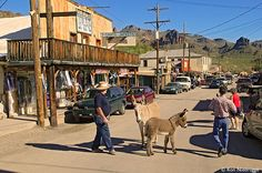 Historic Route 66 passes through the town of Oatman, Arizona where wild burros roam freely in the street.