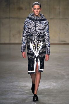 Peter Pilotto Fall 2013 Ready-to-Wear Collection Slideshow on Style.com