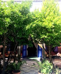 Riad Arij Marrakech Riad Arij is located in the Medina district in Marrakech, 400 metres from Bahia Palace. Guests can enjoy the on-site restaurant. Some rooms have a seating area for your convenience. Views of the mountain, pool or garden are featured in certain...