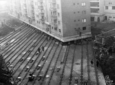 A 7600 ton apartment building being transported to Alba lulia for creating a boulevard, Romania. (1987)