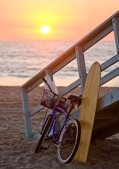 We'll definitely want to take guests on a bike tour of Santa Monica