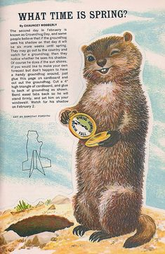 Happy Groundhog Day...love this sweet little guy!