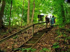 Barren River Lake - Resort Parks - Walking trail on Barren River Lake property