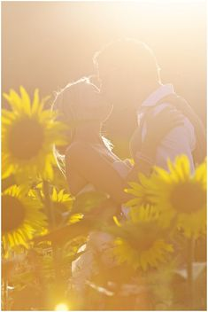 sunflower field engagement photography | Image by Stephenson Imagery