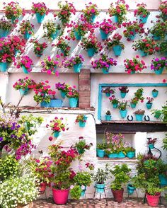 Pinned by apothecaryteaandgallery 🌺🌿🌿 are far as the eye can see 💐 . Thanks for this beautiful photo! Flower Wall, Flower Pots, Flowers, Good Vibes Meaning, Cordoba Spain, Spanish Towns, Andalucia Spain, Welcome Spring, Interior Garden