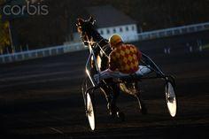 France. Paris. Vincennes. Hippodrome de Vincennes. Horse trotting to heat. Horse : Succes d'Ar. Jockey: Mr. Seoane-Gil.
