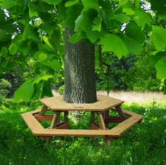 tree table bench