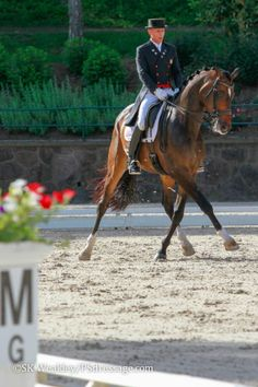 Steffen Peters and Legolas - Grand Prix Freestyle - © Sue Weakley