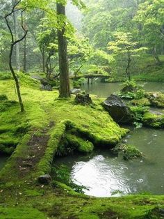 Bridges Park, Ireland. I've only ever been marginally interested in Ireland, but this is one place I'd love to see.