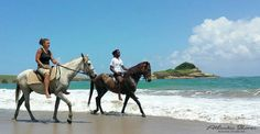 Melanie and Curt riding their horses in St.Lucia