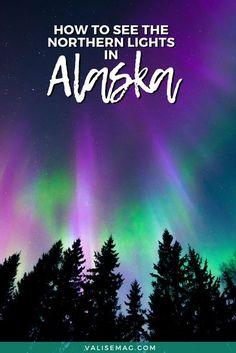 Northern Lights Trips, Alaska Northern Lights, See The Northern Lights, North To Alaska, Visit Alaska, Alaska Travel, Travel Usa, Travel Tips, Alaska Trip