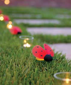 Cute ladybugs and #candles